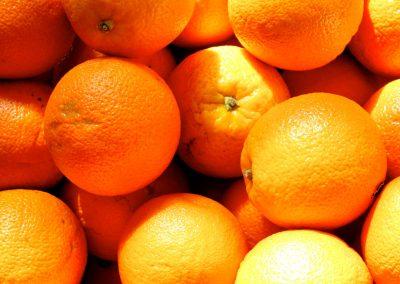 Sinaasappels voor de lekkerste verse  jus